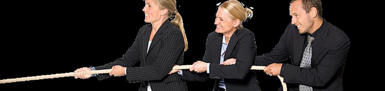 Oepfelbaum IT Management AG als Arbeitgeber auf talendo