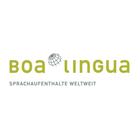 Boa Lingua Logo talendo