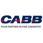 CABB Logo talendo